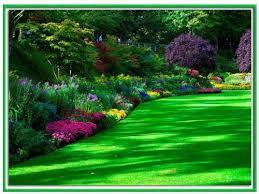 Reconocimiento y manejo de las plantas circulo for 20 plantas ornamentales
